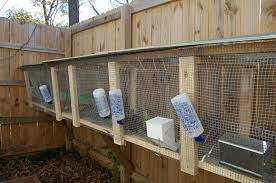 Building Rabbit Cages For Meat Rabbits - Google Search | Bunny ... Learn How To Build A Rabbit Hutch With Easy Follow Itructions Plans For Building Cages Hutches Other Housing Down On 152 Best Rabbits Images Pinterest Meat Rabbits Rabbit And 106 Barn 341 Bunnies Pet House Our Outdoor Housing Story Habitats Tails Hutch Hutches At Cage Source Best 25 Shed Ideas Bunny Sheds Shed Amazoncom Petsfit 425 X 30 46 Inches Cages Exterior Cstruction Nearly Complete Resultado De Imagem Para Plans Row Barn Planos Celeiro