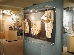 Museum Display Cases Architectural Plastics