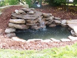Contemporary Design Waterfall For Pond Sweet Build A Backyard Pond ... Backyards Mesmerizing Pond Backyard Fish Winter Ideas With Waterfall Small Home Garden Ponds Waterfalls How To Build A In The Exteriors And Outdoor Plus Best 25 Waterfalls Ideas On Pinterest Water Falls Pictures Filters For Interior A And Family Hdyman Diy Fountains Above Ground Satuskaco To Create Stream For An Howtos 30 Diy Your Back Yard Waterfall