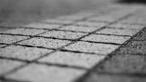 Free Images Black And White Structure Wood Ground Texture Leaf Sidewalk Floor Wall Asphalt Line Color Macro Shadow Soil Tile Weathered