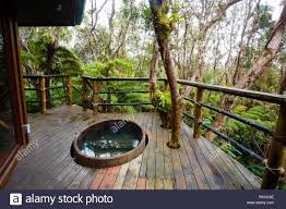 100 Tree Houses With Hot Tubs Outdoor Cedar Hot Tub At A Treehouse In The Rainforest Near Hilo And