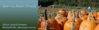 Pumpkin Farms In Southern Maryland by Queen Anne Farm U0026 Pumpkin Patch Fresh Fruits U0026 Vegetables In