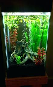 Star Wars Fish Tank Decorations by 36 Gallon Bow Front Aquarium Using Choya Logs For Climbing Lava