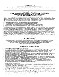 Assistant It Manager Sample Resume Professional Banking Relationship Templates To Showcase Logistic Sales