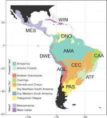 amazonia si e social amazonia is the primary source of neotropical biodiversity pnas