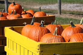 Summers Pumpkin Patch Frederick Md by Fall In Frederick County
