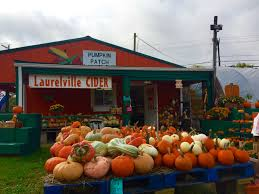 Southern Ohio Pumpkin Patches by 40 Year Pumpkin Show Tradition Retires Forever Scioto Post