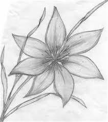 Pencil Drawings Of Flowers Art Bflower Sketches B