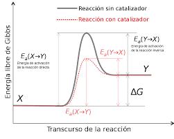 PAUTA LA ENERGIA SE TRANSFORMA