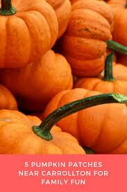Pumpkin Patches Near Colorado Springs Co by Best 25 Pumpkin Patch San Antonio Ideas On Pinterest San