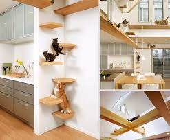Furniture: Cat Friendly House - 20 Amazing Cat Furniture Ideas ... Fniture Cat Friendly House 20 Amazing Ideas Petfriendly Home Renovation Trends Eihome Design Your Will Love Hgtvs Decorating Blog View Pet Apartments Albany Ny Home Planning 3 Bedroom Dog Friendly House Friendnicely Furnished Shoal Bay Holiday 51 Rigney Street Pet The Owners Guide To A Beautiful Lillian Fantastic Inverloch Regatta Treat Stunning Pet Friendly Beachfront Vrbo Rustic Entryway Ideas Entry Rustic With Beds And