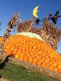 Pumpkin Patches Maryland by Rombachs Farm Chesterfield Missouri Rombach Farms Has The Best
