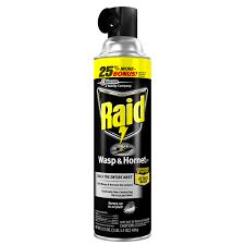 Walmart Outdoor Rugs 5 X 7 by Raid Flea Killer Carpet And Room Spray 16 Oz Walmart Com