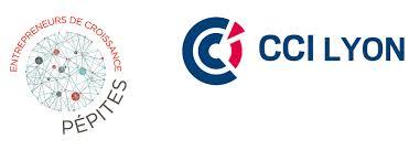 chambre de commerce de lyon actualité programme pépites du cci de lyon