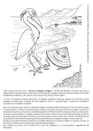 Coloriage Corps Humain Maternelle Unique Sequence Les Ptines Gs La