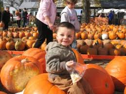 Kingsway Pumpkin Farm Hours by Fall Fun Guide Northeast Ohio Haunted Houses Pumpkin Patches