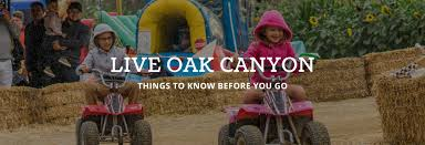 Best Pumpkin Patch Near Corona Ca by The Pumpkin Factory Kbyg Live Oak Canyon