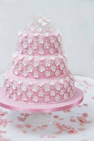 Cake Decorating Books For Beginners by How To Make And Decorate A Wedding Cake Step By Step Guide