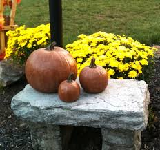 amazon com decorative cast stone pumpkin 3 sizes fall autumn