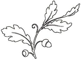 Fall Leaf Clipart Outline S