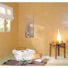 enduit décoratif à la chaux pour intérieur mur de chaux rm