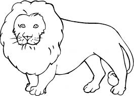 Printable Coloring Pages Of Animals In The Jungle Animal Outlines Colouring