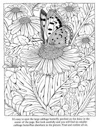 Butterfly Colouring For AdultsAdult