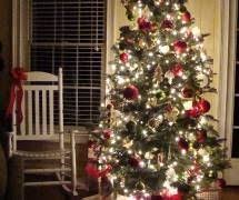 Fraser Fir Christmas Trees Nc by Frosty Mountain Christmas Trees Nc Choose U0026 Cut Christmas Trees