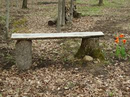 Rustic Outdoor Bench Made From Two Tree Stumps And A Piece Of Slab Wood