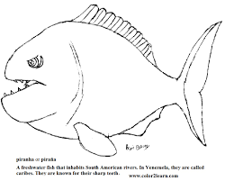 Charmingbeautiful Printable Piranhas Fish Coloring Pages For Kids