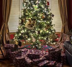 Swivel Straight Christmas Tree Stand Instructions by 5 Best Christmas Tree Stands Jan 2018 Bestreviews