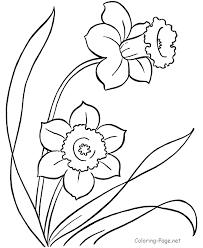 Excellent Coloring Pictures Of Flowers Pefect Color Book Design Ideas