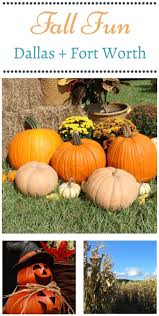 Pumpkin Patch Fort Worth Tx by Top Fall Activities In Dallas Fort Worth Mommadjane
