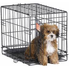 Petco Dog Beds by Divider Outstanding Dog Crates Walmart Surprising Dog Crates