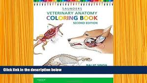 Veterinary Anatomy Coloring Book 2nd Edition Pdf E Saunders For
