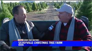 Silveyville Pumpkin Patch Dixon Ca by Silveyville Christmas Tree Farm Offers Fresh Locally Grown Trees