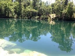 caveatlas com cave diving united states cherokee sink