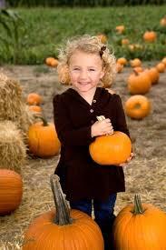 Norms Pumpkin Patch 2015 by 187 Best Sweet Pickins Pumpkin Patch Images On Pinterest Pumpkin