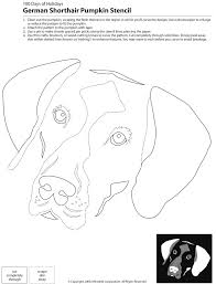 Boston Terrier Pumpkin Pattern by Downloadable Dog Breed Pumpkin Stencils Popsugar Pets