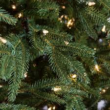 Artificial Douglas Fir Christmas Tree Unlit by National Tree Pre Lit 7 1 2 U0027 Feel Real Frasier Grande Hinged