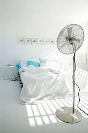 Honeywell Floor Fan Walmart by 59 Best Floor Fan Images On Pinterest Floor Fans Electric Fan