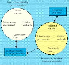 A Translational Innovation Forum Ppt Developing The National Health Service A Model For Services