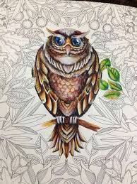 Owls By Irina Vinnik