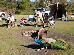 100 Jamberoo Camping Coolendel Prices Coolendel Our Rates