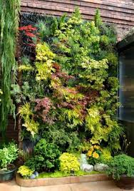 Outdoor Backyard Vertical Garden - Maintenance Tips For Vertical ... Dons Tips Vertical Gardens Burkes Backyard Depiction Of Best Indoor Plant From Home And Garden Diyvertical Gardening Ideas Herb Planter The Green Head Vertical Gardening Auntie Dogmas Spot Plants Apartment Therapy Rainforest Make A Cheap Suet Cedar Discovery Ezgro Hydroponic Container Kits Inhabitat Design Innovation Amazoncom Vegetable Tower Outdoor