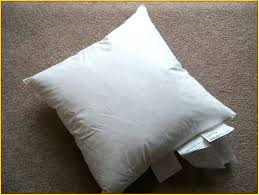 20 Inch Pillow Insert Pillow Forms Wholesale Ikea Pillow Inserts