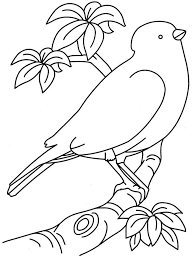 Seasonal Colouring Pages Bird