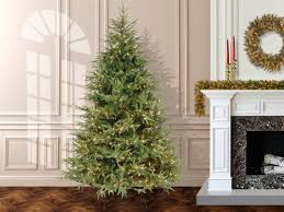 Frasier Christmas Tree Artificial by Australian Sets Christmas Tree Record With 518 838 Lights The