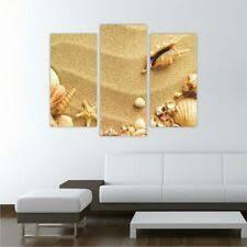 neu acrylglasbilder bild deko glas glasbild muschel strand