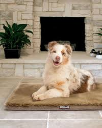 Kirkland Dog Beds by Your Pet Will Love Lounging On The New Kirkland Signature